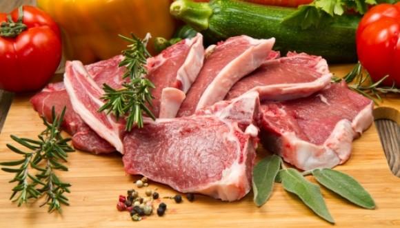 Tema del día: Carnívoros Vs. Vegetarianos