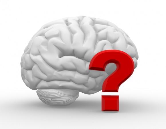 3 tipos de inteligencia para conseguir el éxito