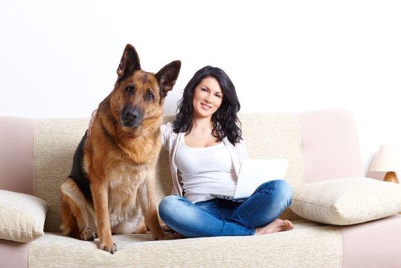 Una de cada 10 mujeres ama más a su mascota que a su pareja
