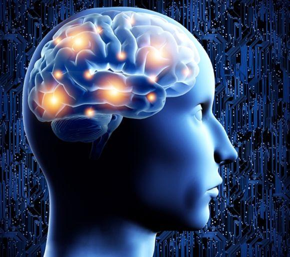 Conoce los 8 hábitos que perjudican el cerebro