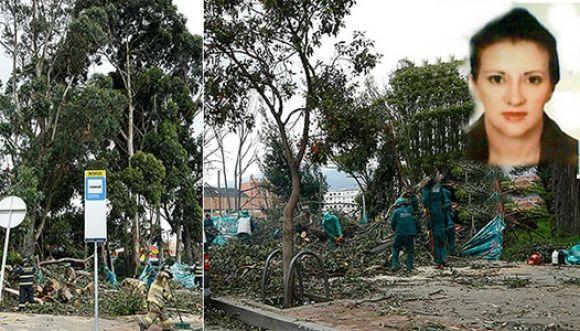 Conoce la historia de la mujer aplastada por un árbol en Bogotá