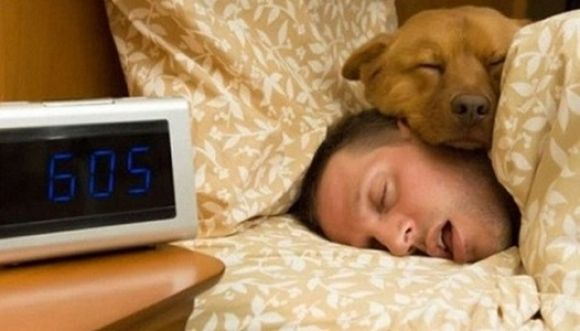 ¿Qué pasa si tu mascota duerme contigo?