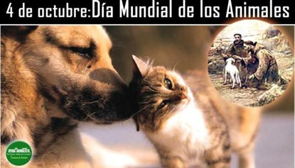 Día Mundial de los Animales... ¡canciones que hablan de ellos!