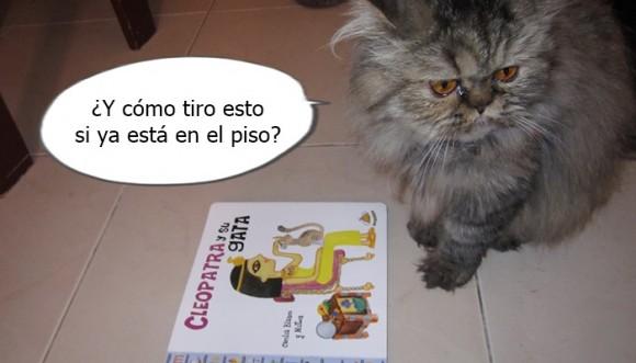 ¿Por qué los gatos tiran todo al piso?