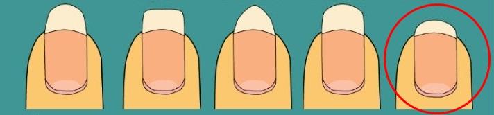 nailshapinglarge