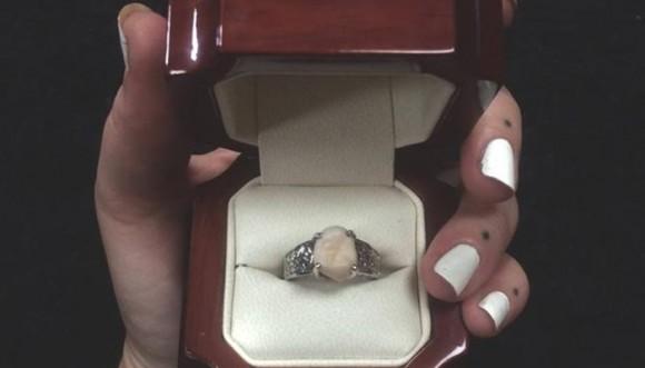 Pide matrimonio con una... ¿Cordal?