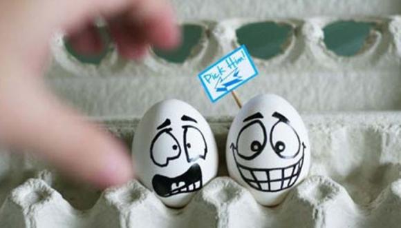 ¿Estás comiendo huevos de gallinas saludables?