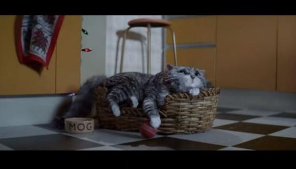 """Gato """"vuelve de la tumba"""" para comercial de supermercado (video)"""