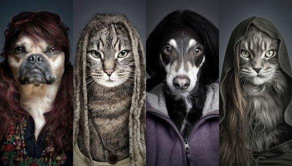 Mascotas vestidas como sus dueños... ¡Divinas!