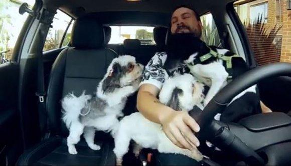 Toño nos enseña a pasear perros en camioneta