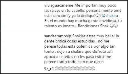ShakiraDefensores