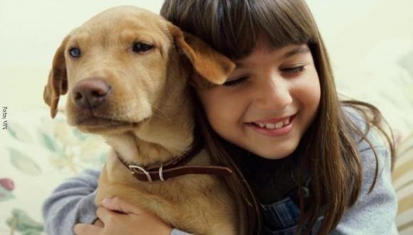 Con esta imagen una niña busca a su perrito