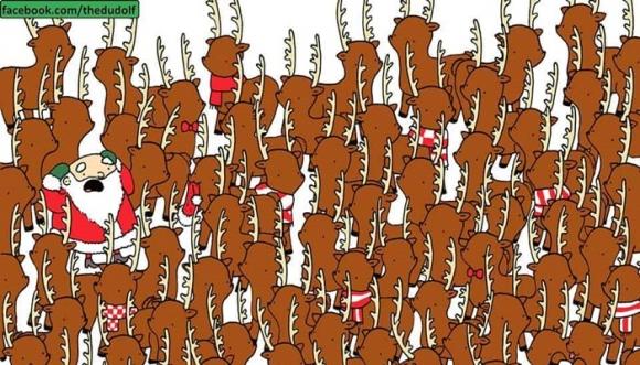 Reto visual: busca el oso entre estos renos