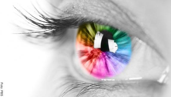 Primer color que encuentres predice tu destino