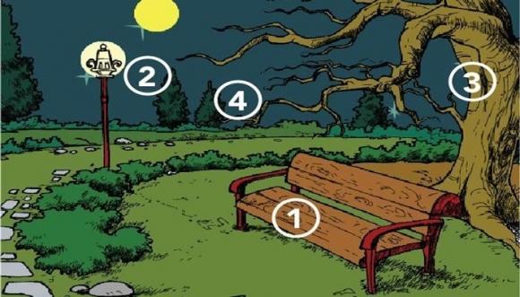 Test: ¿En qué lugar de este parque te sentirías más segur@?