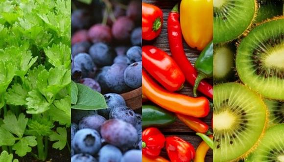 12 alimentos que curan y no sabíamos