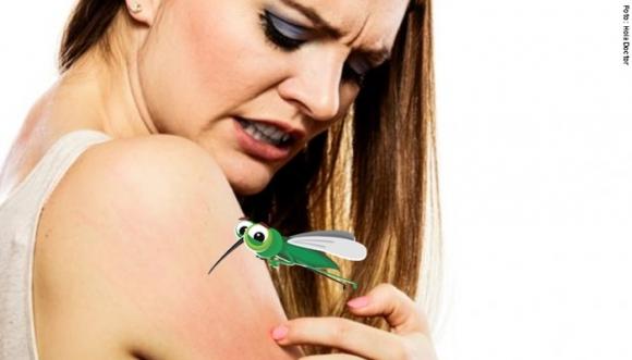 ¿Un mosquito te pica y te rasca durante días?