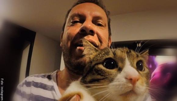 7 preguntas del Doctor Méndez sobre gatos: ¿mito o realidad?