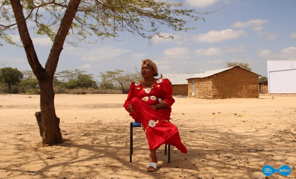 Mujer de Cardonales descansando bajo la sobra de un árbol