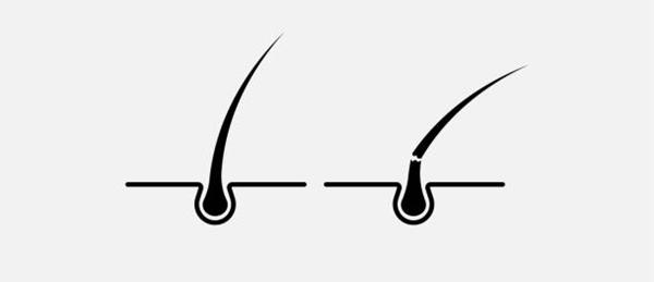 Ilustración de una hebra capilar rota