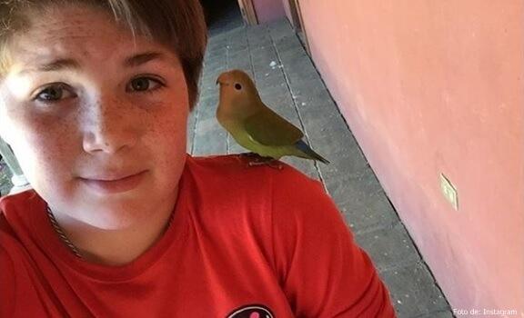 Foto de antes de la muerte de Chimuelo