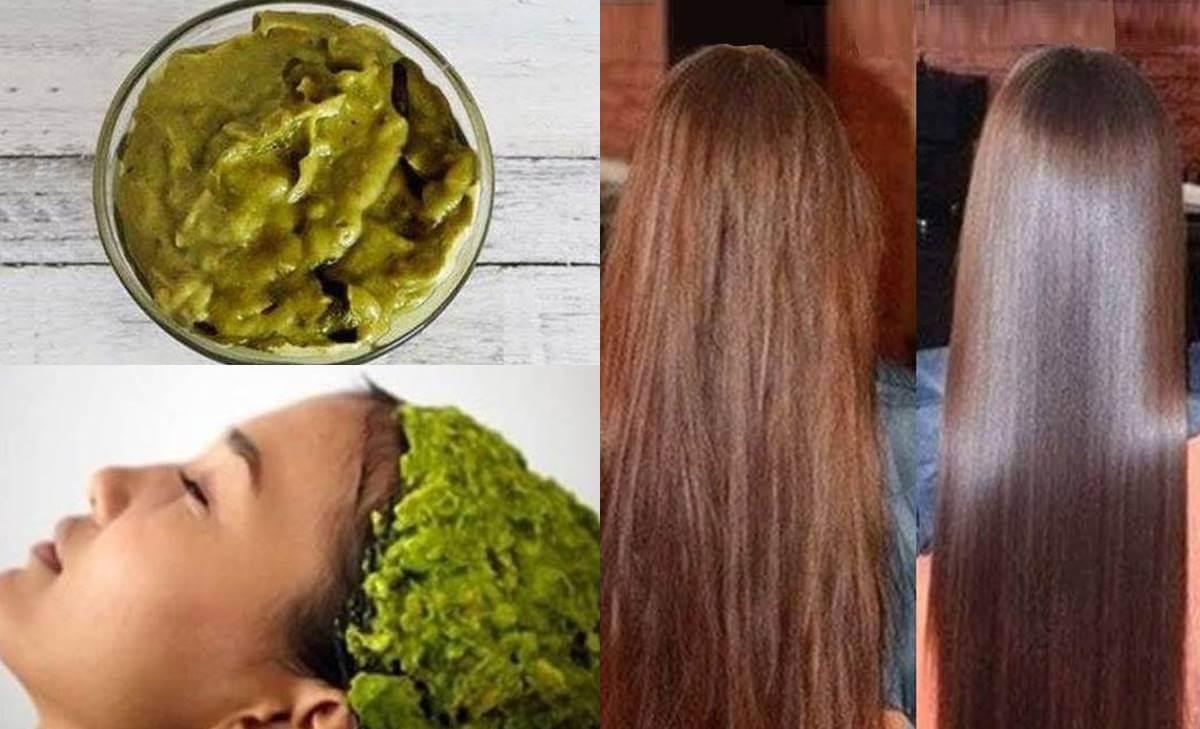 Mascarilla para el cabello con aguacate: ¡le devolverá el brillo a tu melena!