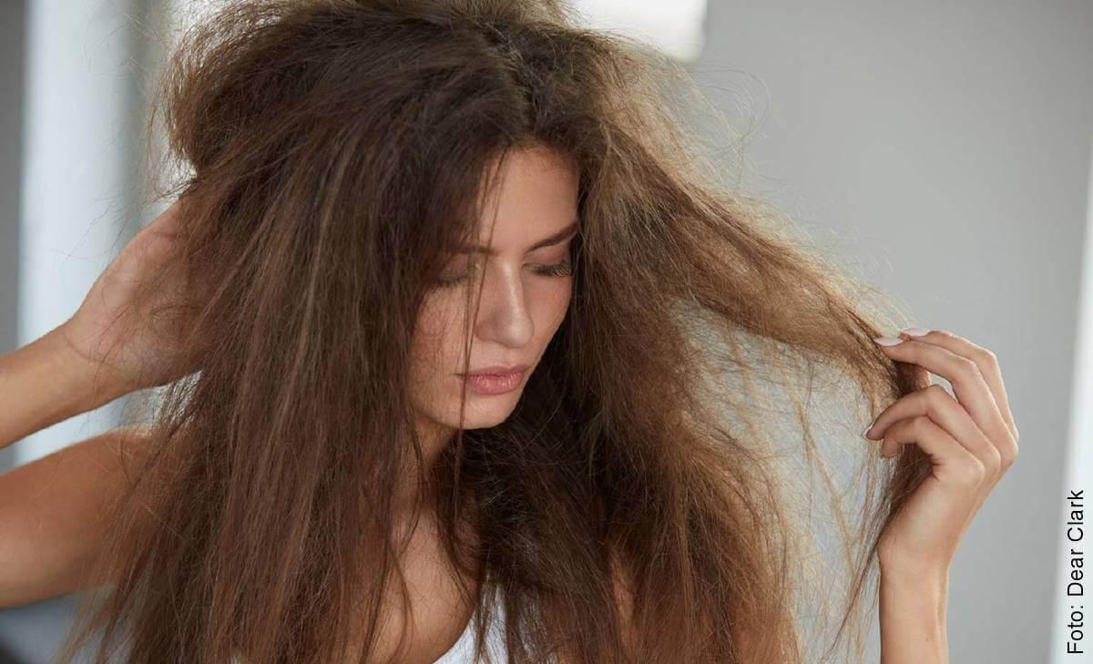 ¿Cómo hidratar el cabello? Aquí te decimos