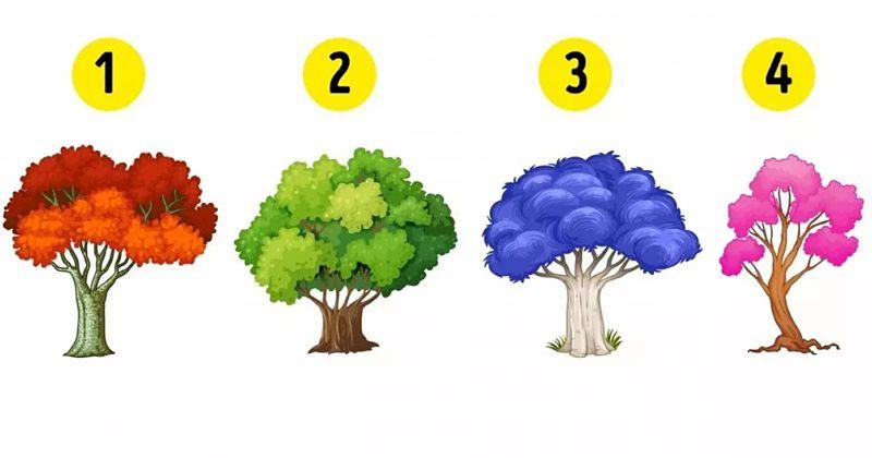 ¿Qué emoción domina tu vida? Uno de estos árboles te lo dirá...