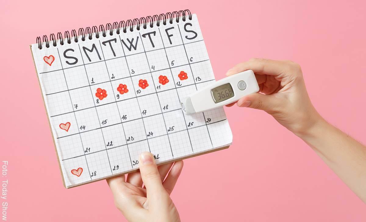 ¿Cuáles son los días fértiles de una mujer?