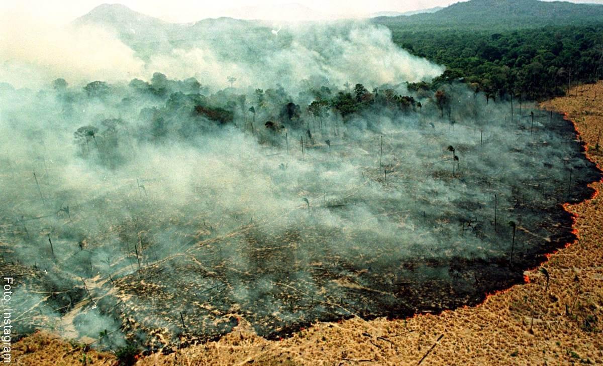 El incendio en el Amazonas indignó a los famosos
