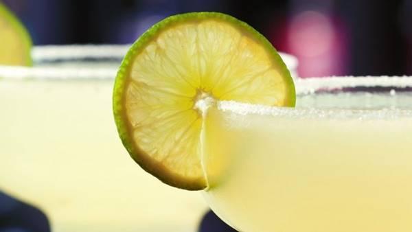 Foto de un margarita con una rodaja de limón en la copa