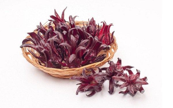 Foto de flor de Jamaica