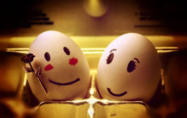 Foto de pareja de huevos