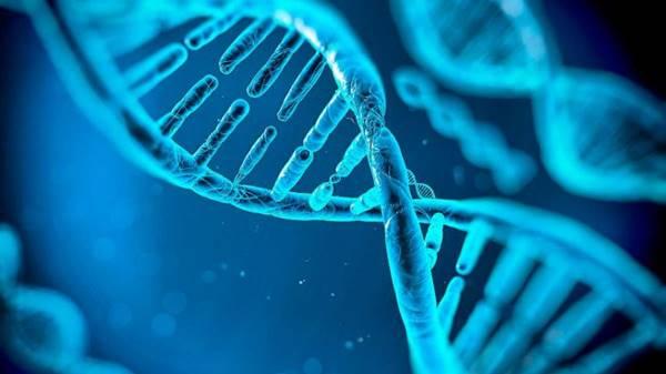 Imagen de ADN