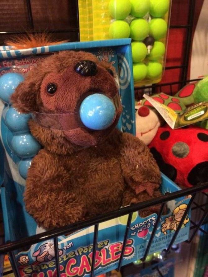 Foto de un oso de peluche con una bola en la boca