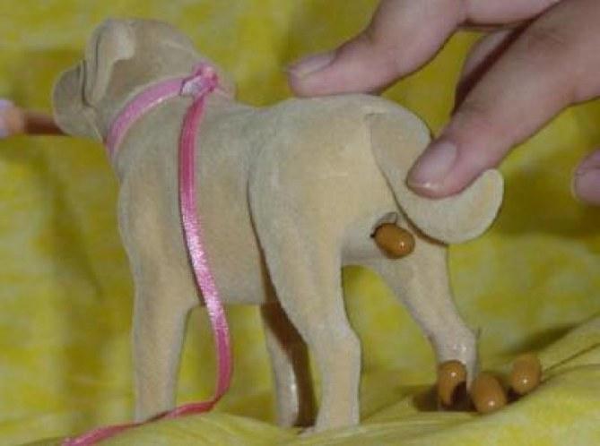 Foto de un perro de juguete haciendo popó
