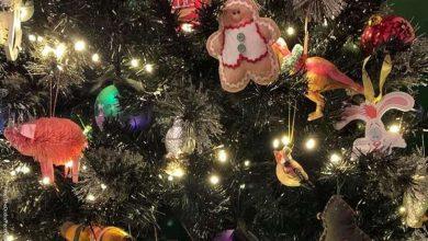 Reto visual ¿Podrás encontrar el gato escondido en el árbol de Navidad?