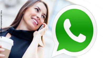 ¿Cómo eliminar el registro de llamadas y videollamadas de WhatsApp? ¡Aquí te damos las instrucciones!