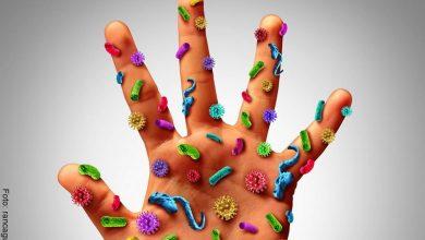 Lavarse las manos: ¿Cómo hacerlo correctamente?