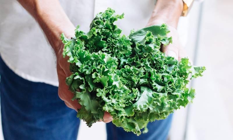 Brócoli, lechuga y rúgula