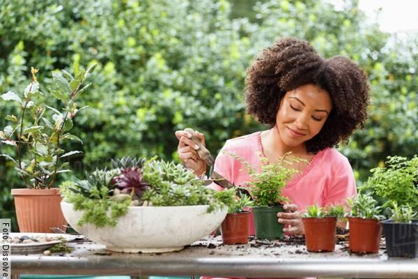 Foto de una mujer arreglando unas plantas