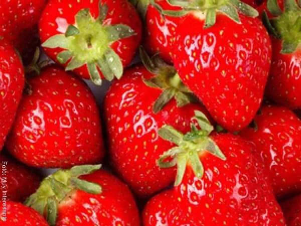 Foto de varias fresas frescas