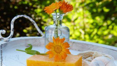 Beneficios de la caléndula para tu salud y bienestar