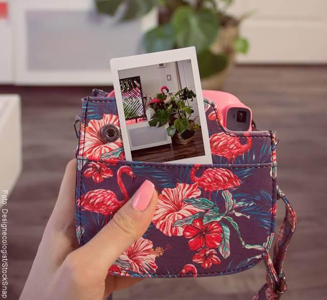 Foto de la mano de una mujer con una cartera