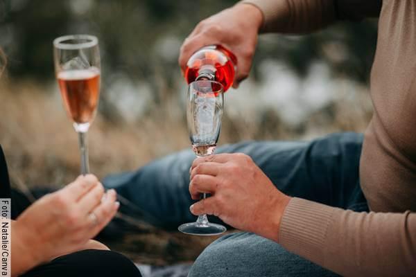 Foto de una pareja tomando vino en el campo