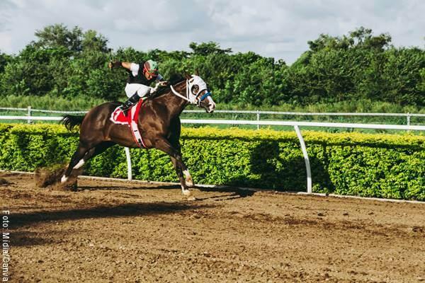 Foto de un jinete en una carrera