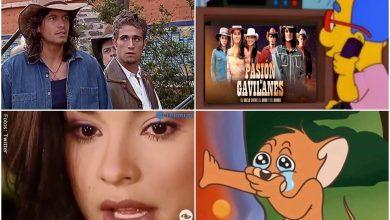 Los memes de Pasión de Gavilanes más graciosos de los últimos días