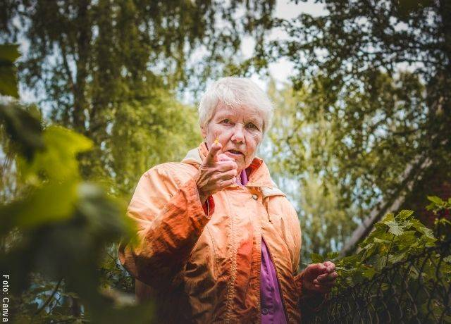 Foto de señora mayor entre los árboles