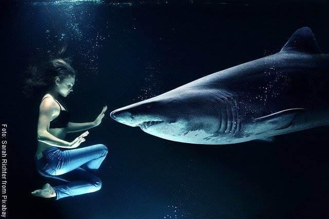 Foto de mujer nadando con un tiburón