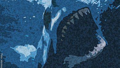 Soñar con tiburones tiene su significado y es sorprendente